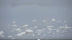 White Foam on The Watery Surface River Close Up Pollution of River Stock Footage