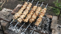 Skewer with a shish kebab on a fire. Stock Footage
