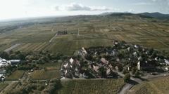 Aero video of  Alsatian vineyard Stock Footage