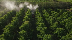 Tilt down view as  orchard sprayer passes underneath Stock Footage