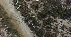 Aerial drone scene from top, over dead trees at epecuen, Stock Footage