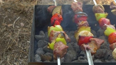 Skewers with kebabs or barbeque on brazier, cam moves to the right, slider Stock Footage