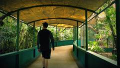 Tourist Walks Under Canopy In Zoo - stock footage
