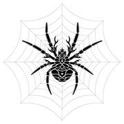 Stylized Spider Stock Illustration