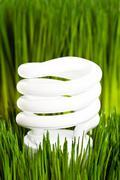 Compact Fluorescent Lightbulb - stock photo