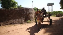 Africa native village kids in wain and donkey Arkistovideo