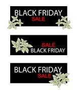 Stock Illustration of Acanthaceae Plant on Black Friday Sale Banner