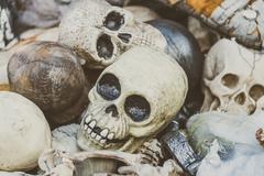 Human skull Stock Photos
