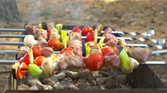 Assorted meat from chicken, pork and various vegetables for barbecue on grill - stock footage