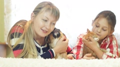 People and Pets - stock footage