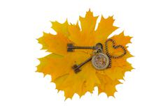 Keys and the mechanism of pocket watch on a background of yellow leaves. Isol - stock photo