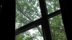 scare: the wind shakes the trees outside the window - stock footage