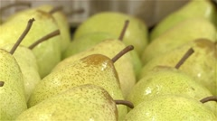 Pears packaging production line manufacture conveyer belt Stock Footage