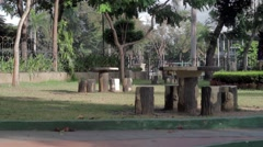 Tables at the Park. Stock Footage