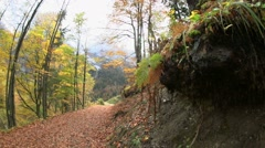 Autumn in austria, tirol Stock Footage
