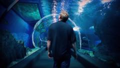 Aquarium Underwater Tunnel With Man Walking Through Stock Footage