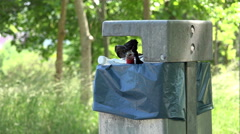 Overflowing trash can in park with alcohol bottle 4k Stock Footage