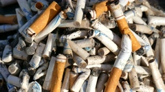 Cigarette butts Stock Footage