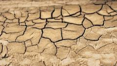 Arid and cracked land - Dolly Shot - stock footage