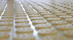 Production of sweets and biscuits in the factory Stock Footage