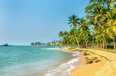 Exotic Caribbean beach full of palm trees Stock Photos