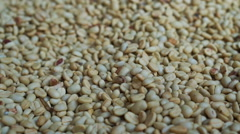 Video of green raw coffee bean pile texture background before roast Stock Footage
