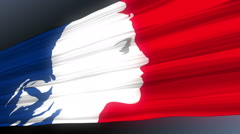 French National Flag, Profile Of Joan Of Arc Stock Footage