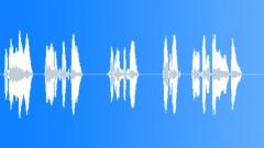 BRLUSD (6L) Day volume Sound Effect