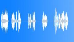 BRLUSD (6L) Voice alert (EMA89) - sound effect