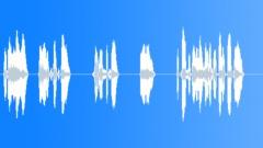 BRLUSD (6L) Voice alert (EMA144) - sound effect