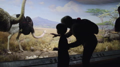 Mother and son looking at ostrich display in Natural History Museum in 4K NYC Stock Footage