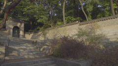 The leaves stiring in the wind at Changdeokgung Palace in South Korea Stock Footage