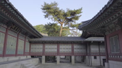 Changdeokgung Palace in South Korea Stock Footage