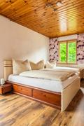 Room in the woods - stock photo