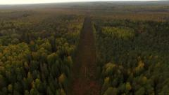 4K aerial view – flying over autumn forest glade road with electricity towers Stock Footage