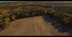 4K aerial view – flying over harvested field glade in middle of autumn forest Stock Footage