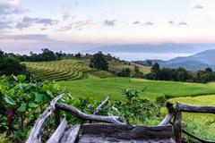 Wooden balcony for scenic of terraced rice field at Ban Pa Bong Piang, Mae Ja - stock photo