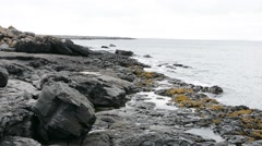 Burren, Ireland Stock Footage