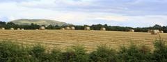 Beautiful field with straw bales in irish countryside Stock Photos