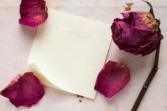 Stock Photo of Old rose and blank sticky note paper
