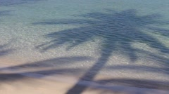 Stock Video Footage of Coconut palm tree shadow and sea water wave the beautiful tropical beach