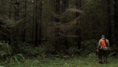 Deer Hunter Walking Into Forest - stock footage