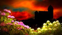 Stock Illustration of Beautiful landscape with flowers