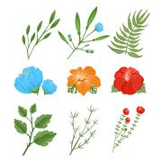 Set of traditional and tropical flowers - stock illustration