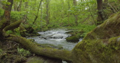 A Stream in Bradford West Yorkshire Stock Footage