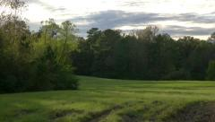 Beautiful evening pastoral scene with camera pan. Stock Footage