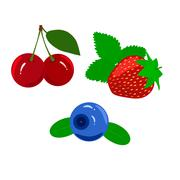 Set of juicy ripe berries isolated on a white background Stock Illustration