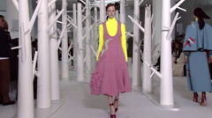 Delpozo Fashion Show Fall 2015 Collection NYFW 03 Stock Footage