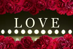 Love card with bush of red rose flowers background and play of light - stock photo