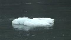 Large ice floating Stock Footage